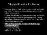 dihybrid practice problems4