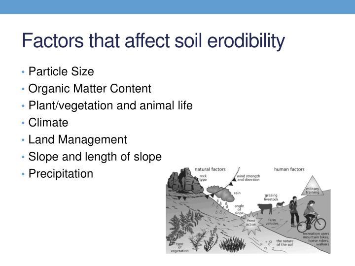 Factors that affect soil