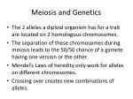 meiosis and genetics