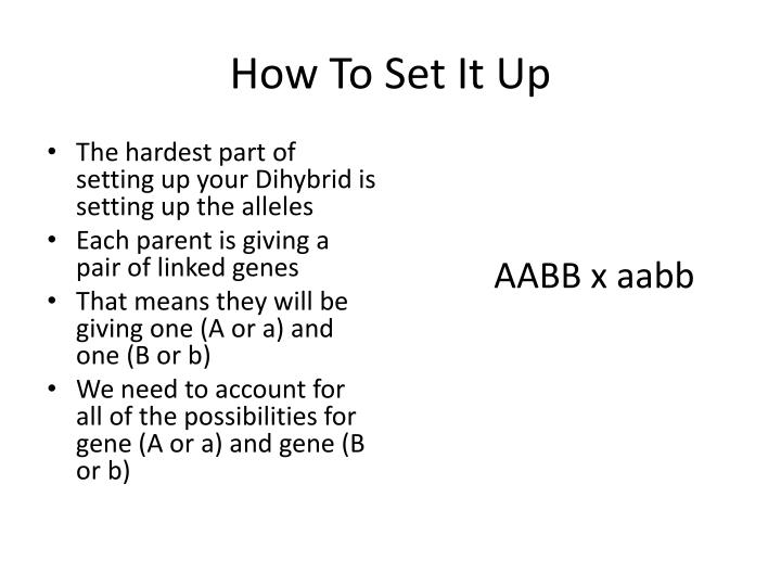 How To Set It Up