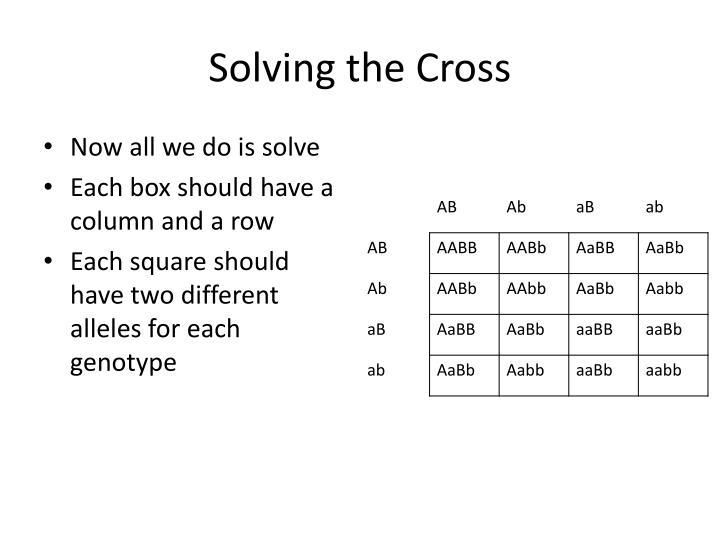 Solving the Cross
