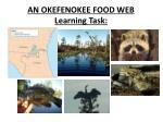 an okefenokee food web learning task