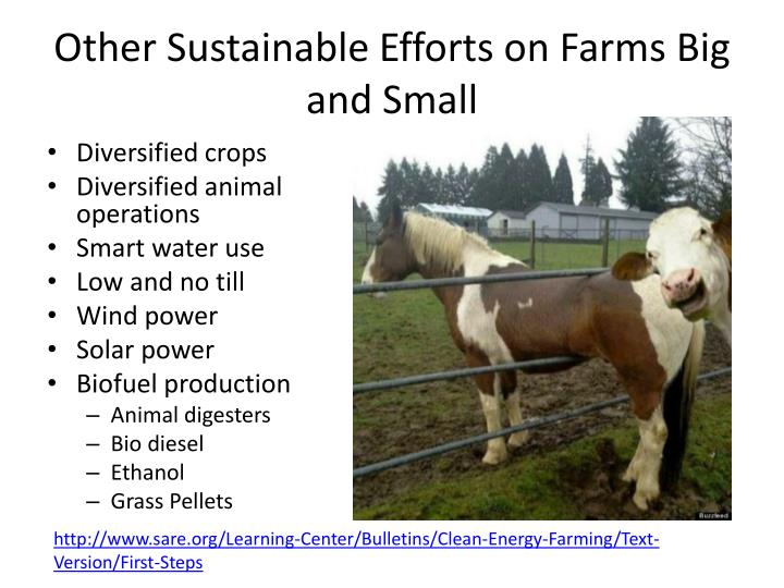 other sustainable efforts on farms big and small n.