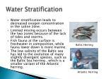 water stratification