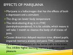effects of marijuana