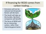 if financing for redd comes from carbon trading