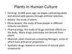 plants in human culture