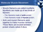 molecular muscle movement