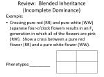 review blended inheritance incomplete dominance