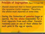 principle of segregation figure 11 5 page 266