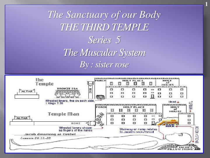 the sanctuary of our body the third temple series 5 the muscular system by sister rose n.