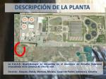 descripci n de la planta