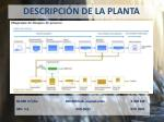 descripci n de la planta1