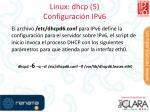 linux dhcp 5 configuraci n ipv6