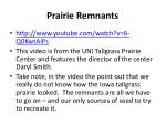 prairie remnants5