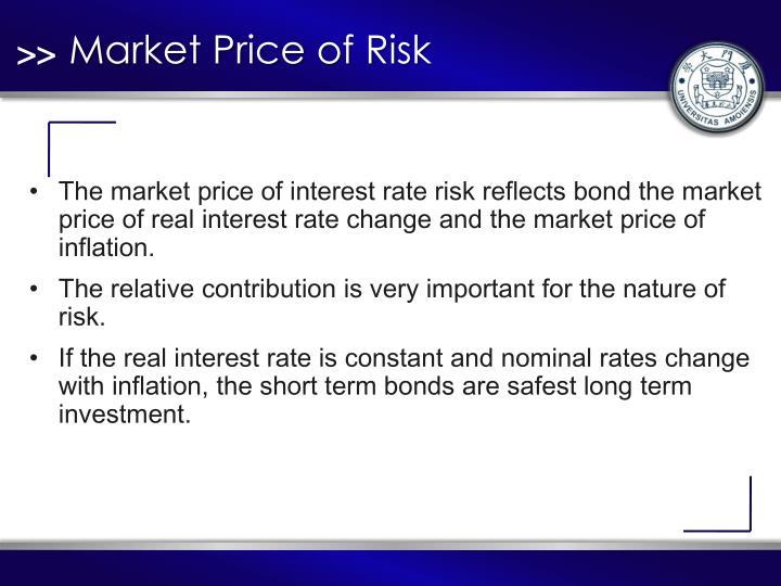 Market Price of Risk