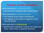 features of dna replication2