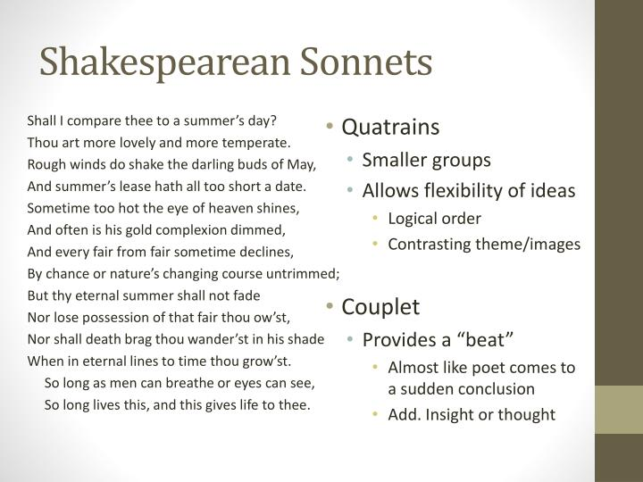 shakespeare courtly love