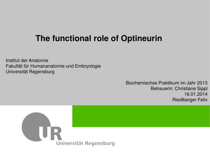 the functional role of optineurin n.