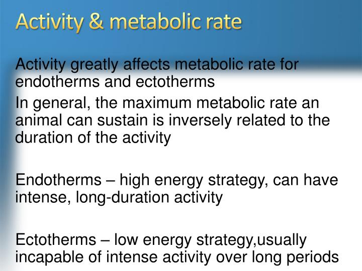 Activity & metabolic rate