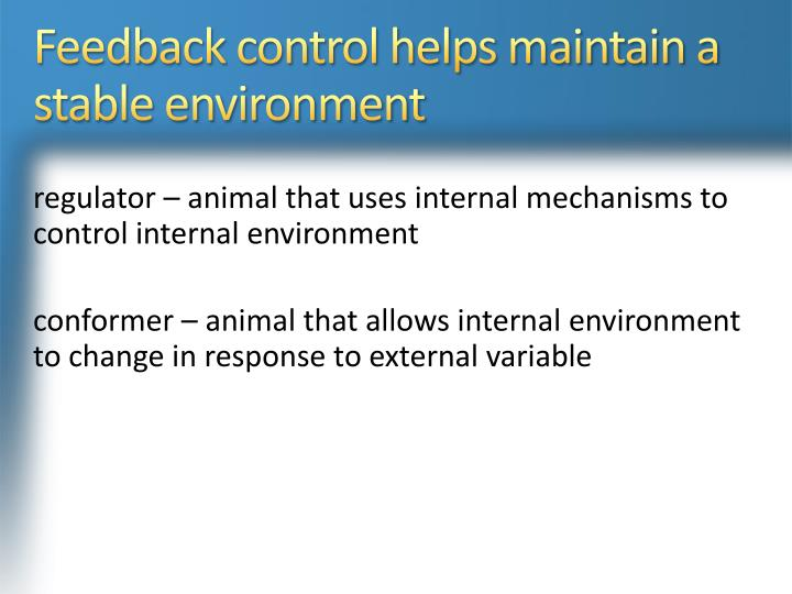 Feedback control helps maintain a stable environment