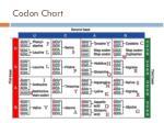 codon chart1