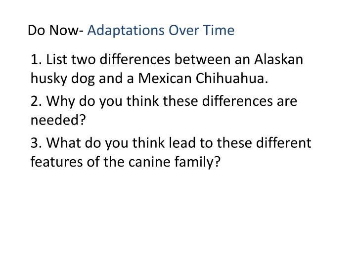do now adaptations over time n.