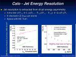 calo jet energy resolution