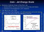 calo jet energy scale