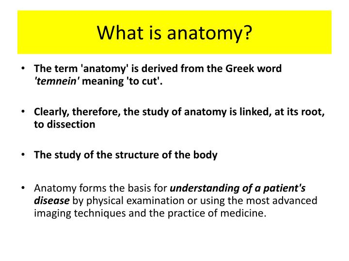 Ppt What Is Anatomy Powerpoint Presentation Id2227398