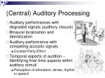 central auditory processing2