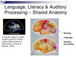 language literacy auditory processing shared anatomy