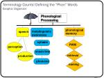 terminology counts defining the phon words graphic organizer