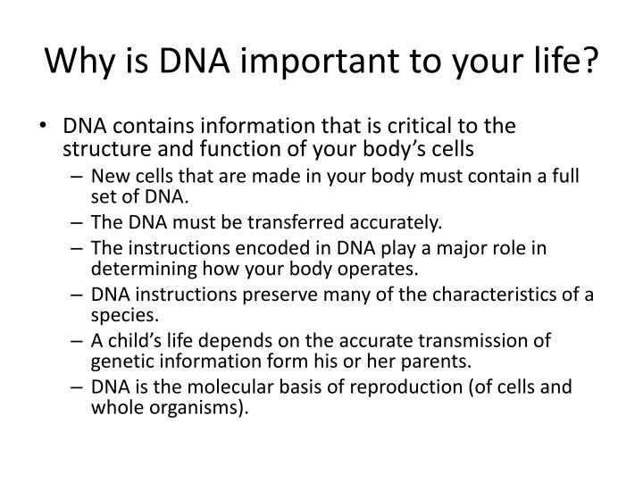 what is dna and why is it important