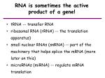 rna is sometimes the active product of a gene