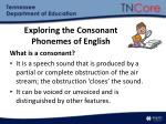 exploring the consonant phonemes of english