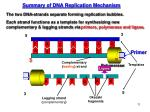 summary of dna replication mechanism