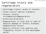 cartilage injury and regeneration