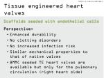 tissue engineered heart valves