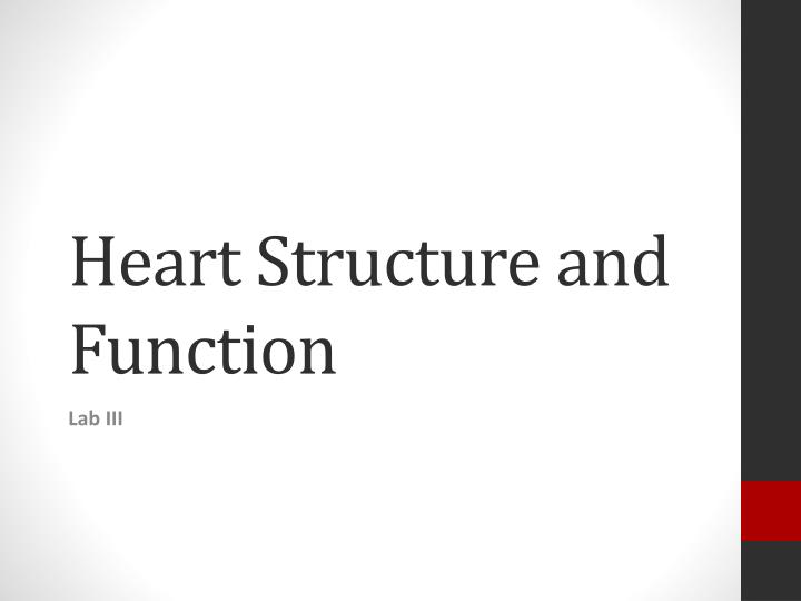 heart structure and function n.