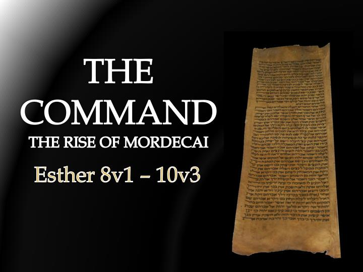 the command the rise of mordecai n.