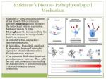 parkinson s disease pathophysiological mechanism