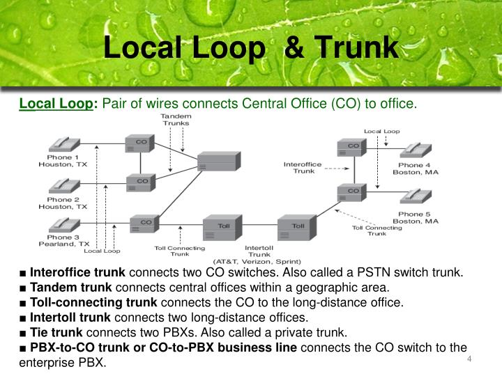 Local Loop  & Trunk