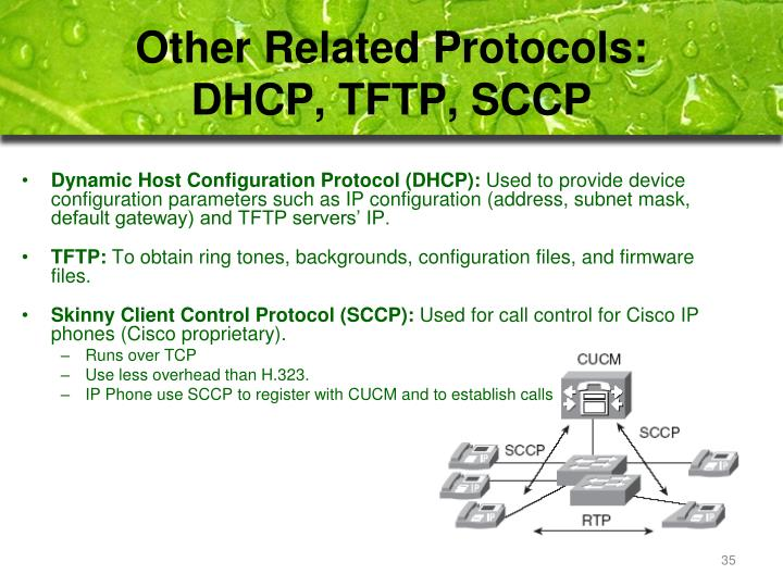 Other Related Protocols: