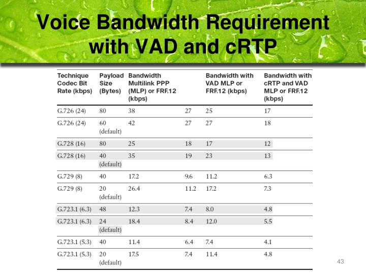 Voice Bandwidth Requirement with VAD and