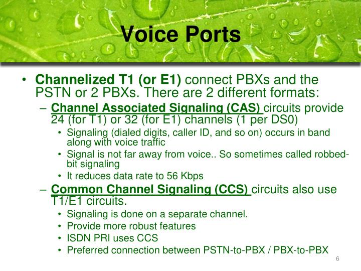 Voice Ports
