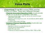 voice ports1