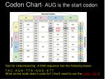 codon chart aug is the start codon