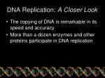 dna replication a closer look