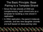 the basic principle base pairing to a template strand